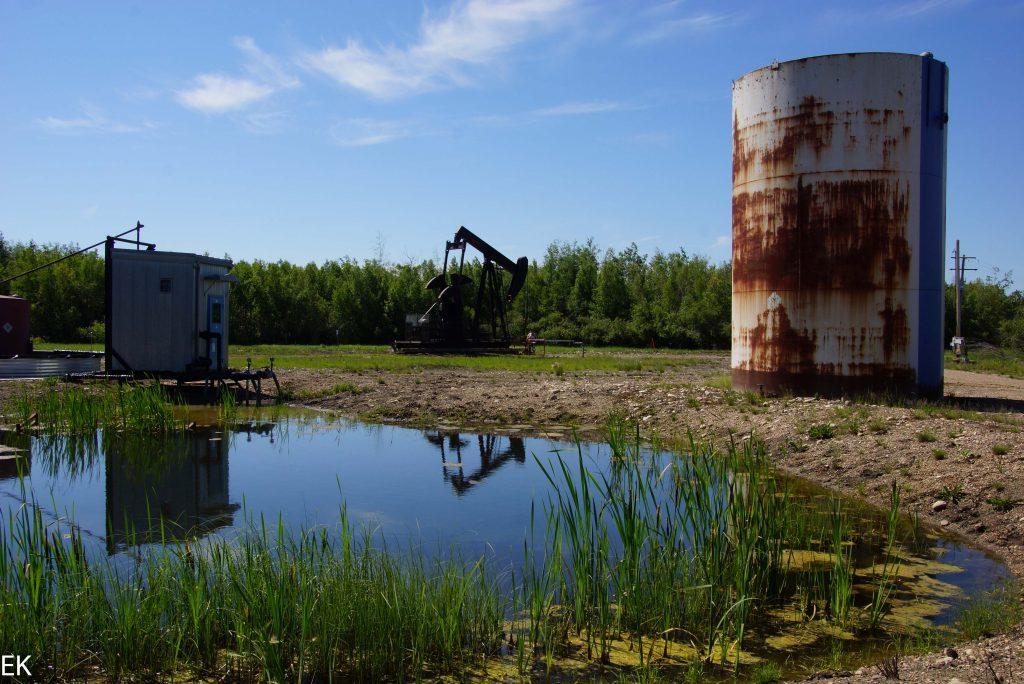 Klein-Ölförderung im Wald