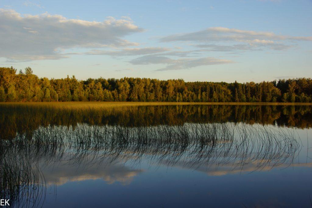 Lake Economy