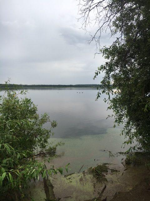 """See ohne Namen. Ich nenne ihn """"Loon Lake"""", wegen der drei Loons, die ich auf dem Wasser entdecke."""