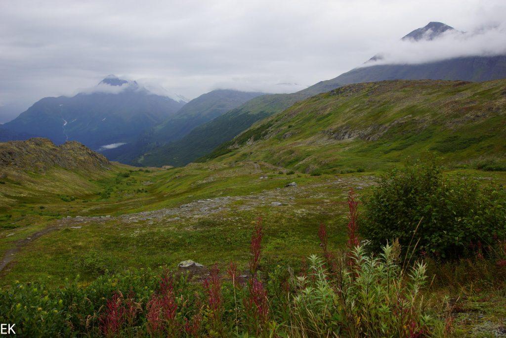 Berge, und Gletscher, man kann sich kaum satt sehen