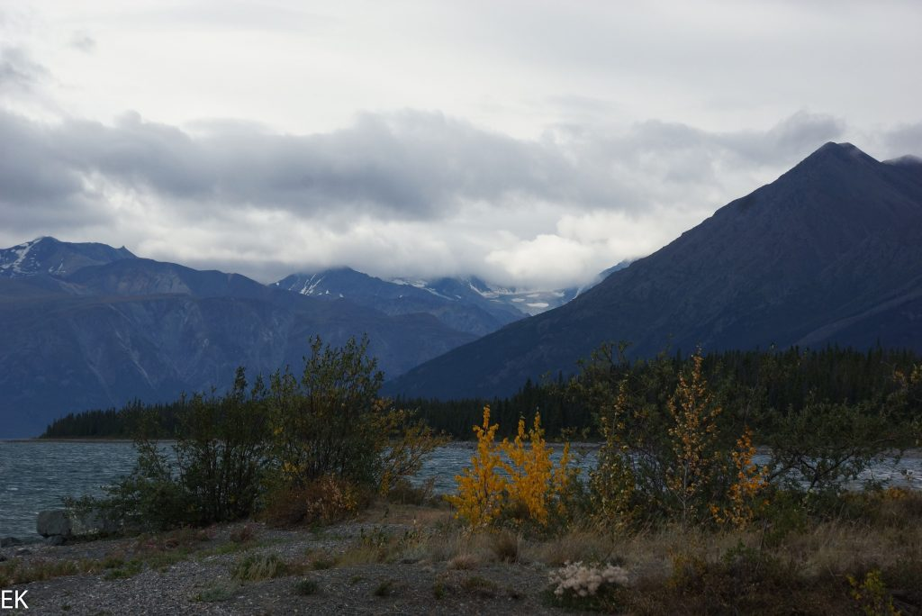 Am Kluane Lake