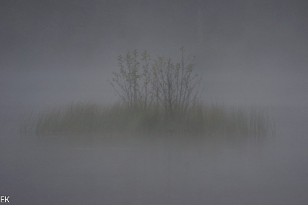 Im Nebel versunkener See..