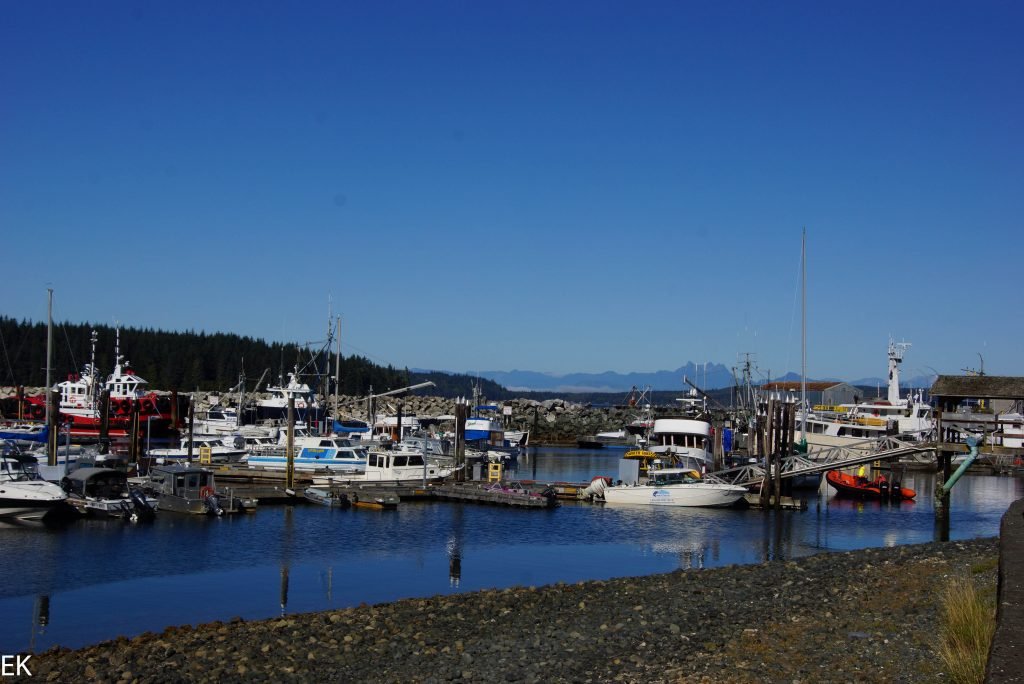 Port McNeill, Hafen
