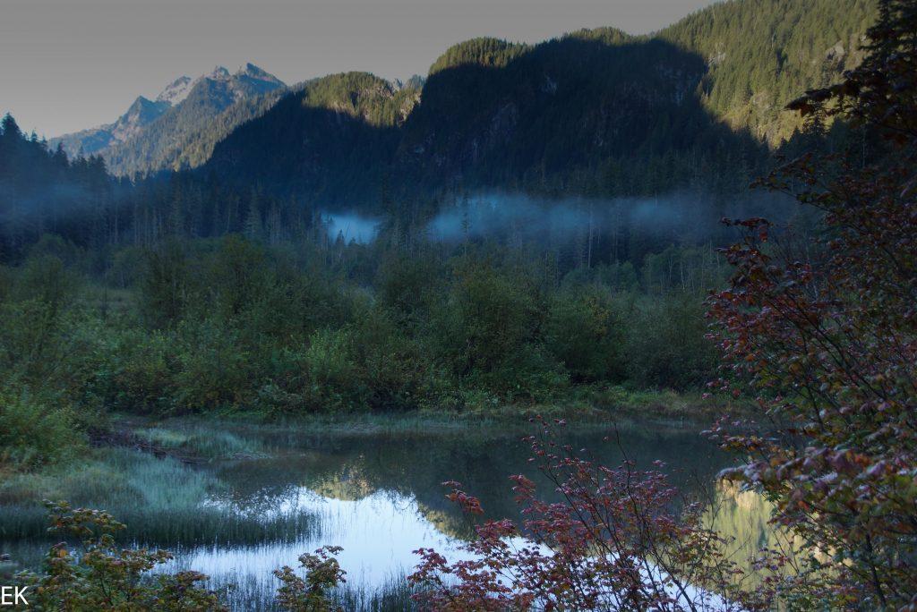 Im Mt. Rainier NP