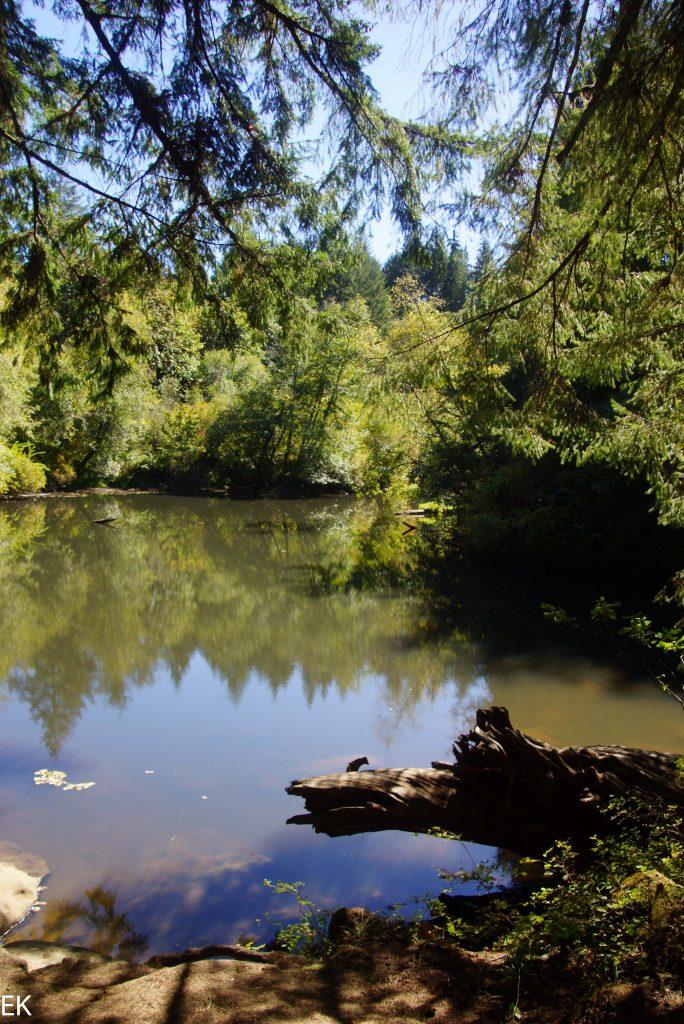 Siulaw Pond, die Falls waren gerade abgeschaltet...