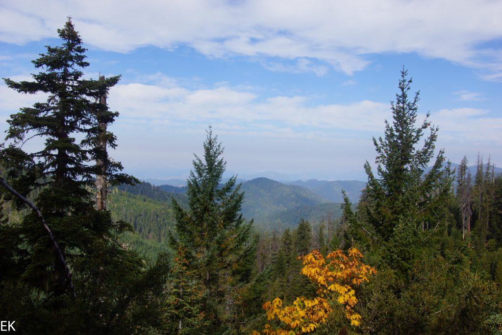 Blick über die Sikiyou Mountains