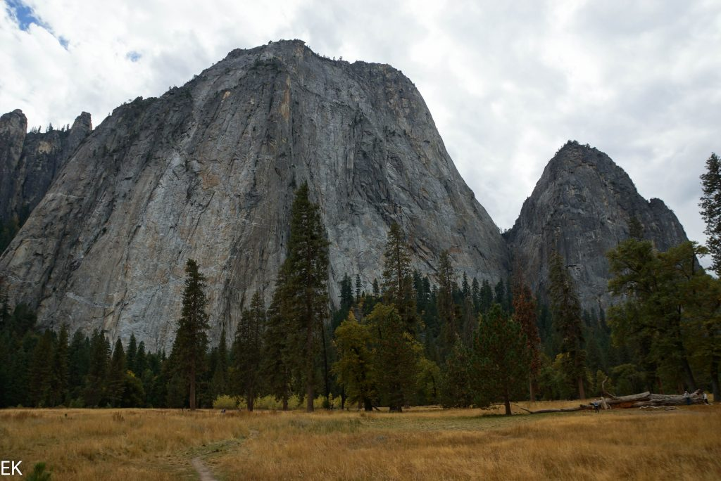Meadows im Yosemite Valley