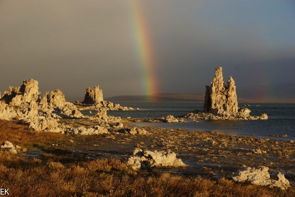 Mono Lake: Tufas im Morgenlicht