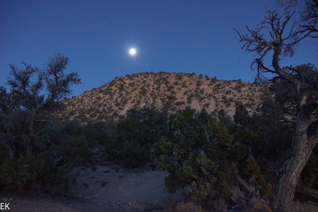 Mond- und Sonnenlicht